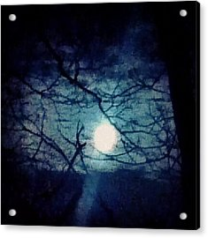 Moon Framed By Tree Branches Acrylic Print