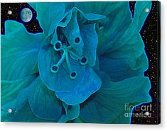 Moon Glow Acrylic Print by James Temple