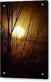 Moon I Acrylic Print