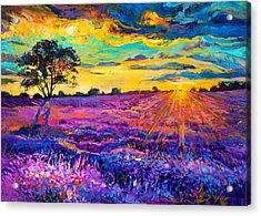Lavender Field Acrylic Print by Ivailo Nikolov