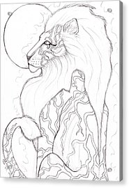 Moon Lion Sketch Acrylic Print by Coriander  Shea