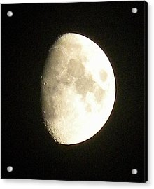Moon Lit Night Acrylic Print
