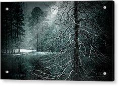 Moon Misty Lake  Acrylic Print by Dorothy Walker