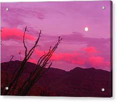 Moon Of The West Acrylic Print