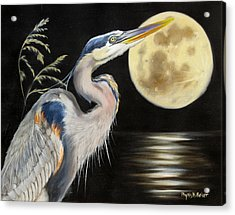Moon Over Mississippi A Great Blue Herons Perspective Acrylic Print by Phyllis Beiser