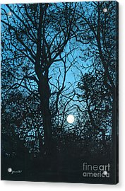 Moon Over Pittsburgh Acrylic Print by Barbara Jewell