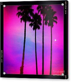 Moon Palms Acrylic Print