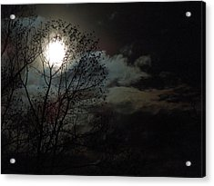 Moon Rise Acrylic Print by Pete Trenholm