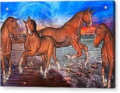 Moon Rise Splendor Acrylic Print