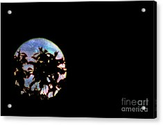 Acrylic Print featuring the photograph Moon Rising by Leslie Hunziker