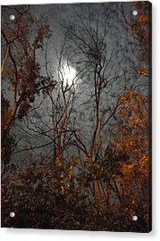 Moon Shiner Acrylic Print by Guy Ricketts
