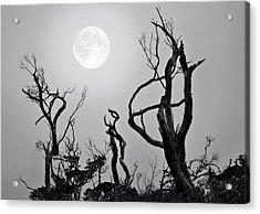 Moon Whisperer Acrylic Print