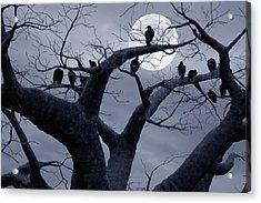 Moon Whisperer II Acrylic Print