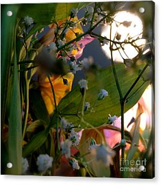 Moonlight Flowers Acrylic Print by Susan Townsend