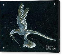 Moonlight Hunt - Microraptor Acrylic Print