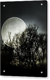 Moonlight Acrylic Print by Marianna Mills