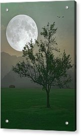 Moonlight On The Plains Acrylic Print by Tom York Images