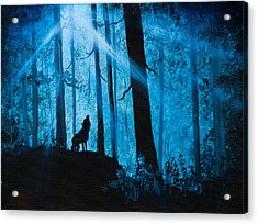 Moonlight Serenade Acrylic Print by C Steele