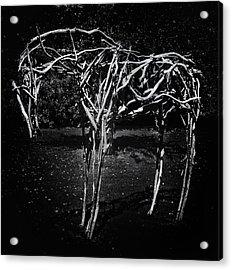 Moonlight Stick Pony Acrylic Print