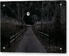 Moonlight Trail Acrylic Print by Michael Rucker