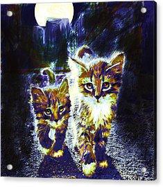Moonlight Travelers Acrylic Print by Jane Schnetlage