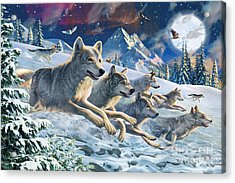 Moonlight Wolfpack Acrylic Print by Adrian Chesterman
