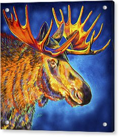 Moose Blues Acrylic Print by Teshia Art