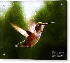 Moonlit Iridescence  Acrylic Print