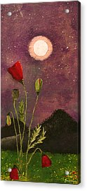 Moonlit Poppies Acrylic Print by Rebecca Pickrel