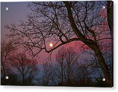 Moonrise Acrylic Print by Kathryn Meyer