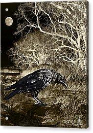 Moonshadow Acrylic Print