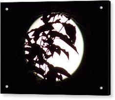 Moonshine 10 Evasion Acrylic Print