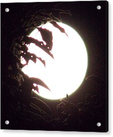 Moonshine 11 Evsion Pt2 Acrylic Print