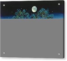 Moonshine Sonata, 2006 Oil On Canvas Acrylic Print