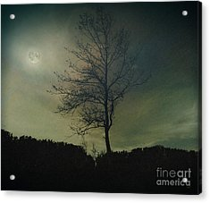 Moonspell Acrylic Print by Bedros Awak