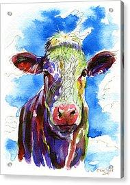 Moooo Acrylic Print by Bill Stork