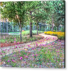 Acrylic Print featuring the photograph Moore Garden Stroll by Patricia Schaefer