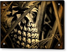 Moorea Pineapple Acrylic Print by Milton Thompson