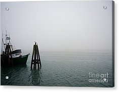 Acrylic Print featuring the photograph Moored by CML Brown