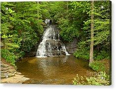 Moores Creek Falls Acrylic Print