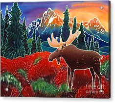 Moose In The Meadow Acrylic Print by Harriet Peck Taylor
