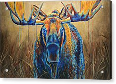 Moose Marsh Acrylic Print by Teshia Art