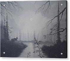 Moose Swanson River Alaska Acrylic Print