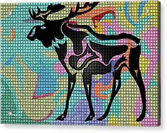 Moose Tracks Acrylic Print by Robert Margetts