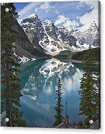 Moraine Lake Overlook Acrylic Print