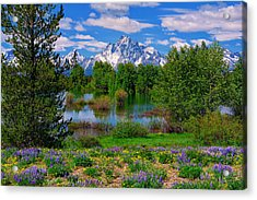 Moran From Pilgrim Creek Acrylic Print