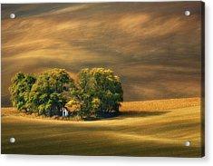 Moravian Fields... Acrylic Print