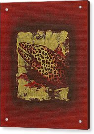 Moray Eel Acrylic Print