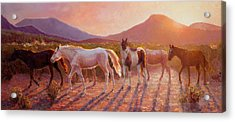 More Than Light Arizona Sunset And Wild Horses Acrylic Print