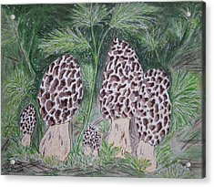 Acrylic Print featuring the painting Morel Mushrooms by Kathy Marrs Chandler